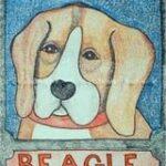 dogmtbeagle